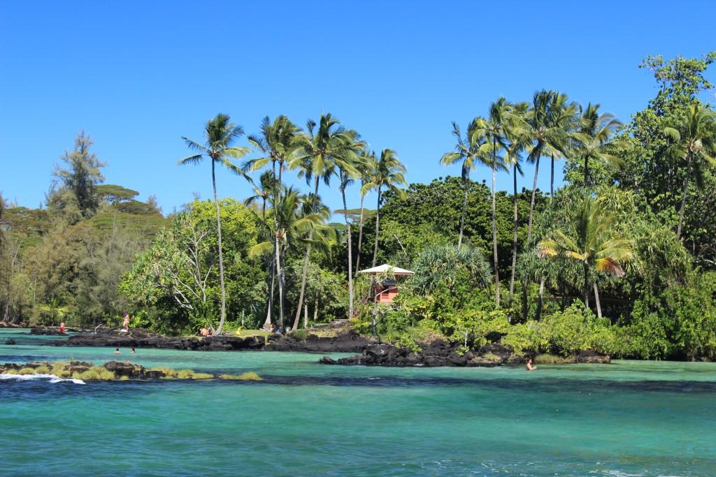 Four-mile_beach,_Hilo,_Hawaii